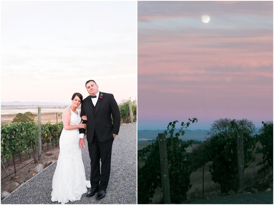 Napa Valley, California Viansa Winery Wedding by Alea Lovely